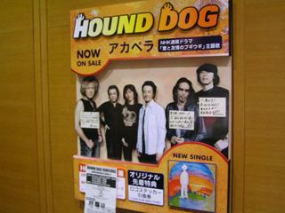 HOUND DOG展